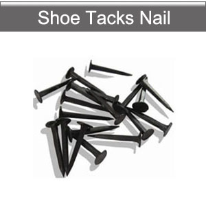 Shoe tacks nail